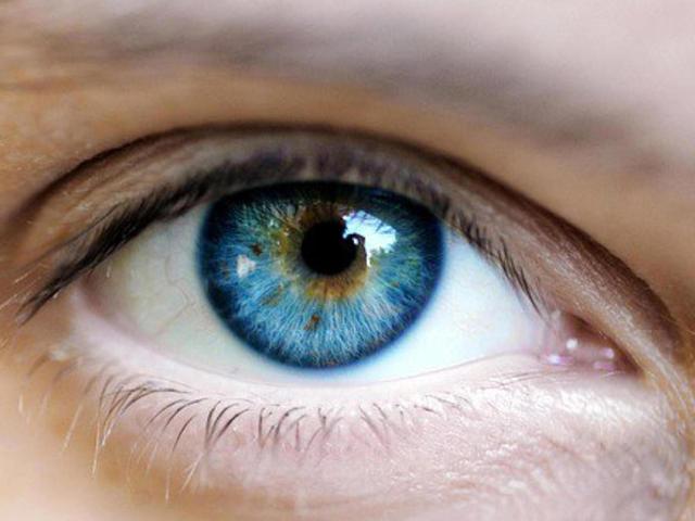 視線 心理