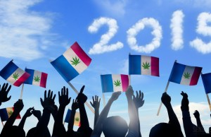 Cannabis_in_France_-_what_happened_in_2015_-_Sensi_Seeds_Blog-4-1024x540-a0c3d5be7d7cc07d558515a62e7cde5c0d0e089a