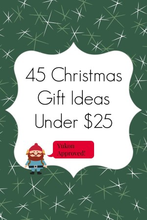 Are you looking for a few Christmas gift ideas to help complete your list? Well, you've come to the right place. I'm a big fan of the consumable gifts that don't add to the endless junk we Americans have, so I've included many in this list. Hopefully you're able to find a few Christmas gift ideas from this list that will bring joy to those around you.