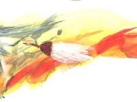 秋葉の火神