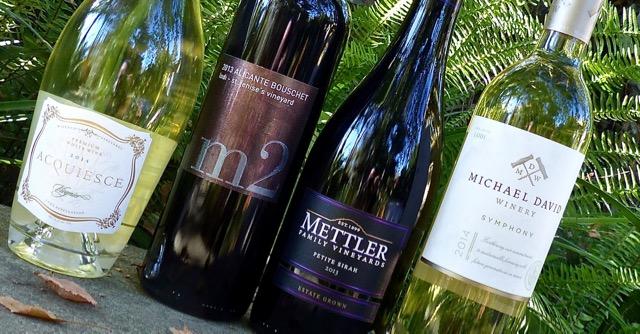 Lodi Wine Tasting Lineup
