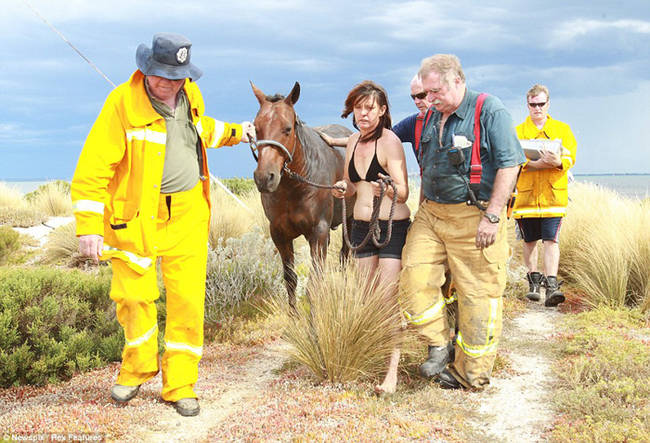 The horse only suffered mild dehydration and will make a full recovery.