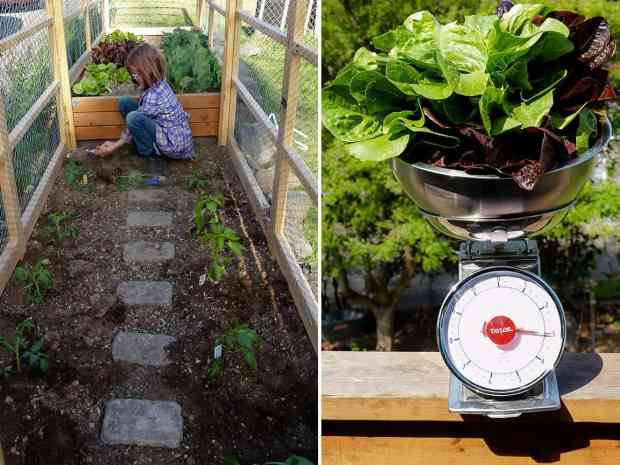 Meet Hailey The 9 Year Old Who Grows Food And Builds