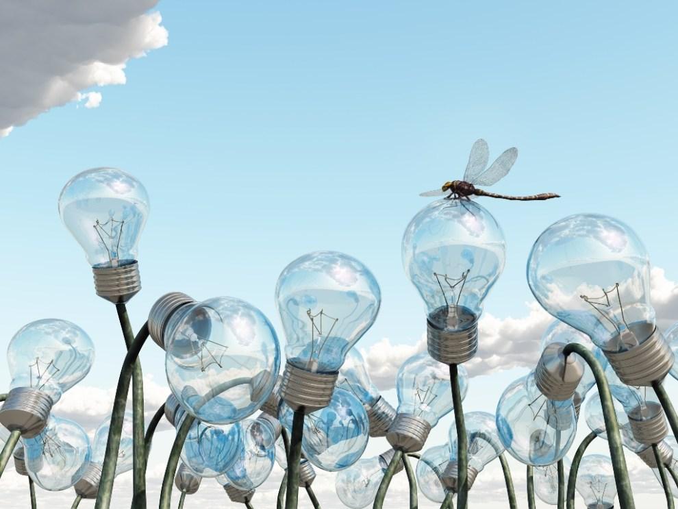 competitividad e innnovación