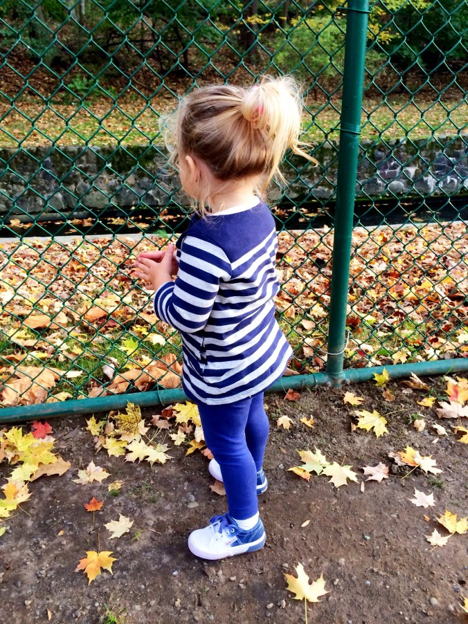 ponytails at the park