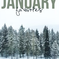 My Favorite Things: January