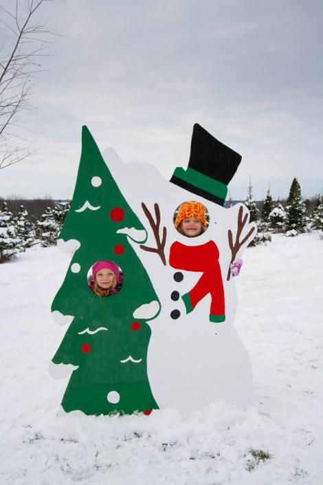 Christmas Tree 2014 - 6