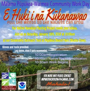 Community Work Day – E Huki i nā Kūkanawao!