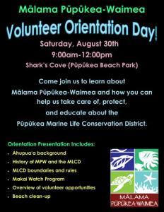 Volunteer Orientation MPW flier
