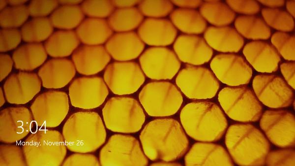 Original beehive image for Win 8