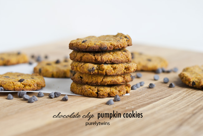 Paleo Egg Free Chocolate Chip Pumpkin Cookies