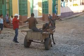 puriy-reiseblog-trinidad-11