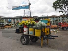 Blumen, Mercado De Paloquemao, Bogota