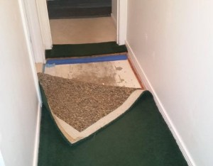 Can i save my carpet and pad after a flood for Bathroom flooded wet carpet