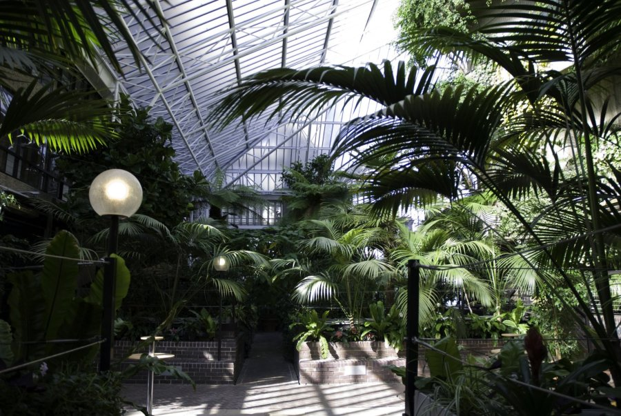Lovely and Alternative Things To Do In London | Barbican Garden Room