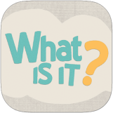 what is it puzzle