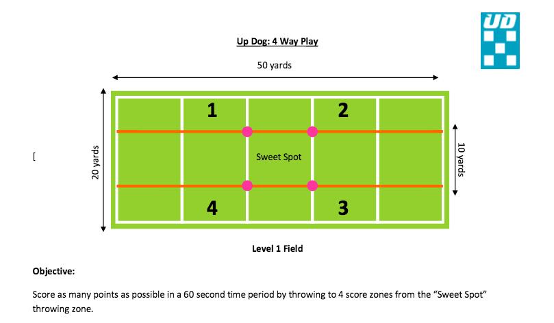 UpDog 4 Way Play