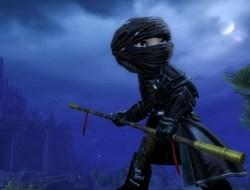Guild Wars 2 Image du fracasseur