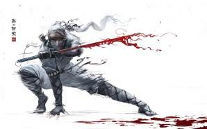 Shadow Tactics : Blades of the Shogun | Test