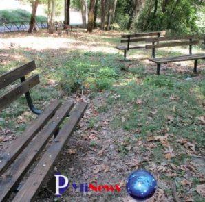 Pialeia (1)