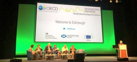hogan_edinburgh_oecd