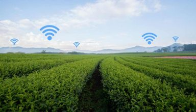 smart-farming-wifi-xorafia-696x464
