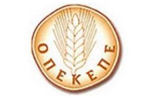 n_logo_opekepe