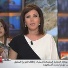 News Anchor Interrupted By Daughter on Live TV