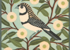 Kate hudson_2014_Double barred Finch_reduction lino_13.5x13cm.tiff