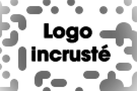 logo incrust1