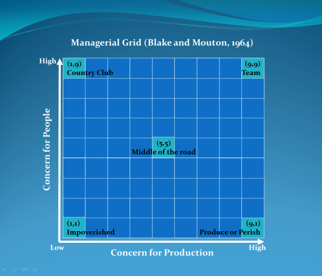 manegerial grid the leadership styles The blake mouton managerial grid identifies five different leadership styles based on a grid.