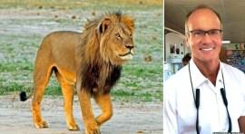 Zimbabwe pide extradición de dentista que cazó a león Cecil