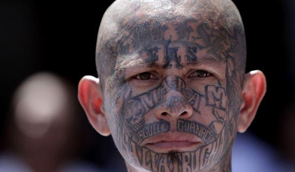 Presidente Trump culpa a Obama por crecimiento de la pandilla Mara Salvatrucha