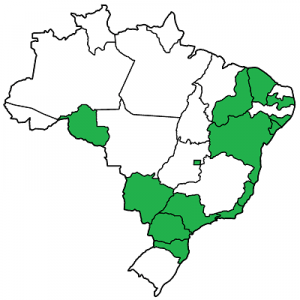 Gay marriage, Brazil