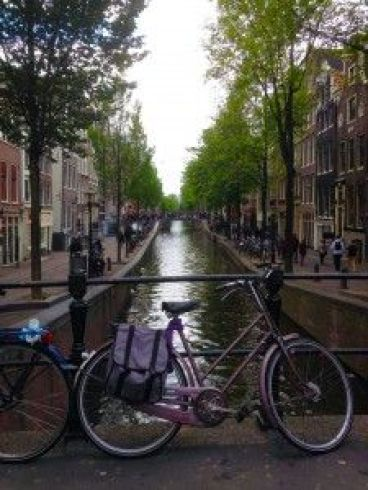 foto de Amsterdam ¿Dónde ir con mi mascota?