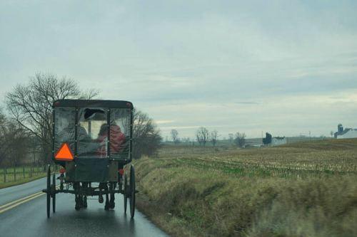 Carreta de caballos de los amish