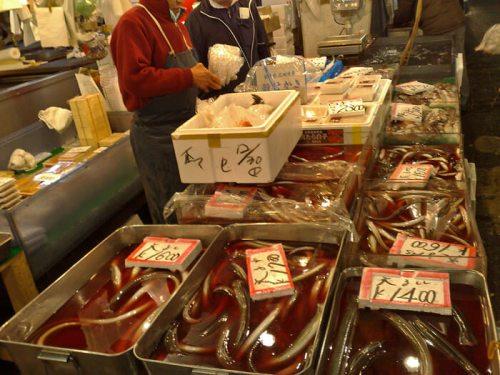 Puesto de anguilas en el Mercado Tsukiji de Tokio