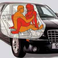Carma Sutra.   The Auto-Erotic Handbook.
