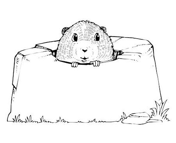 Ground Hog Day coloring page