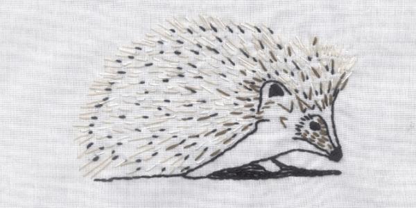 Hamish the Hedgehog Outlander