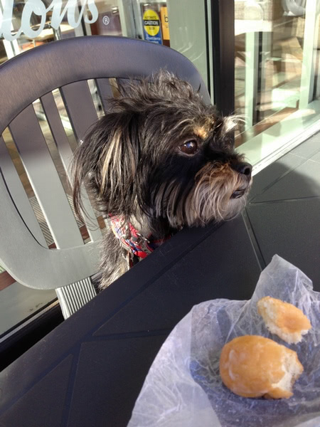 But Mom, I don't like that kind, I only like the plain Timbits.