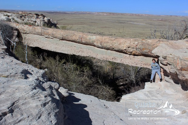 Boy sitting at Agate Bridge in Petrified Forest National Park