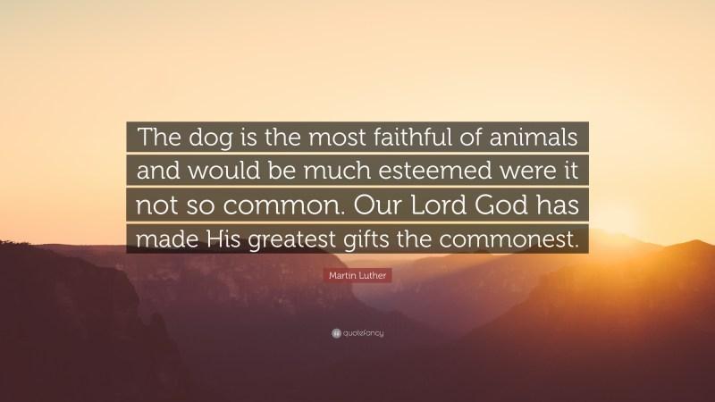 Large Of So God Made A Dog