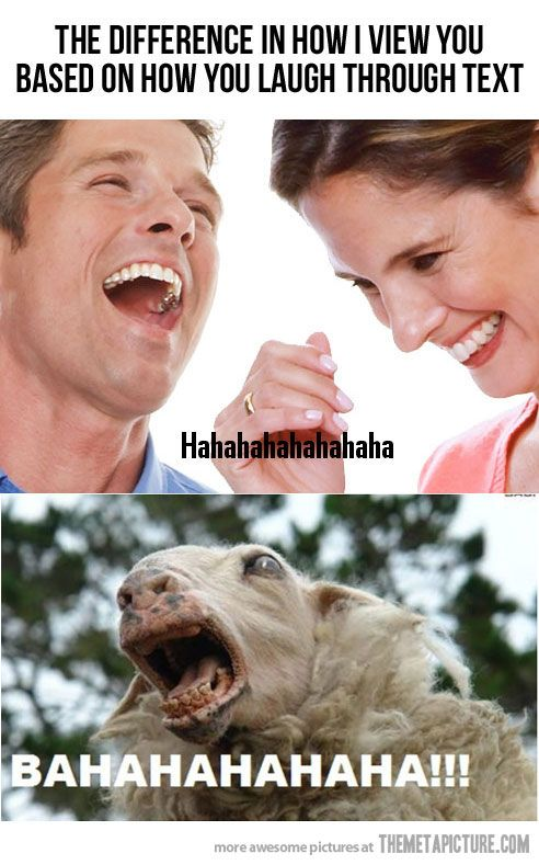 Top 25 Funny Animal Photos #Humor