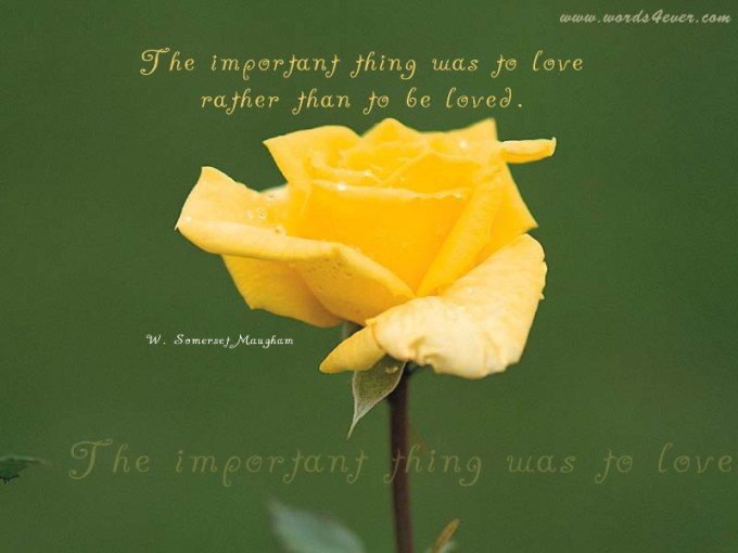Yellow rose images with love quotes yokwallpapers flowers quotes pictures and images with message 4 mightylinksfo