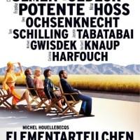 Elementarteilchen / Temel Parçacıklar