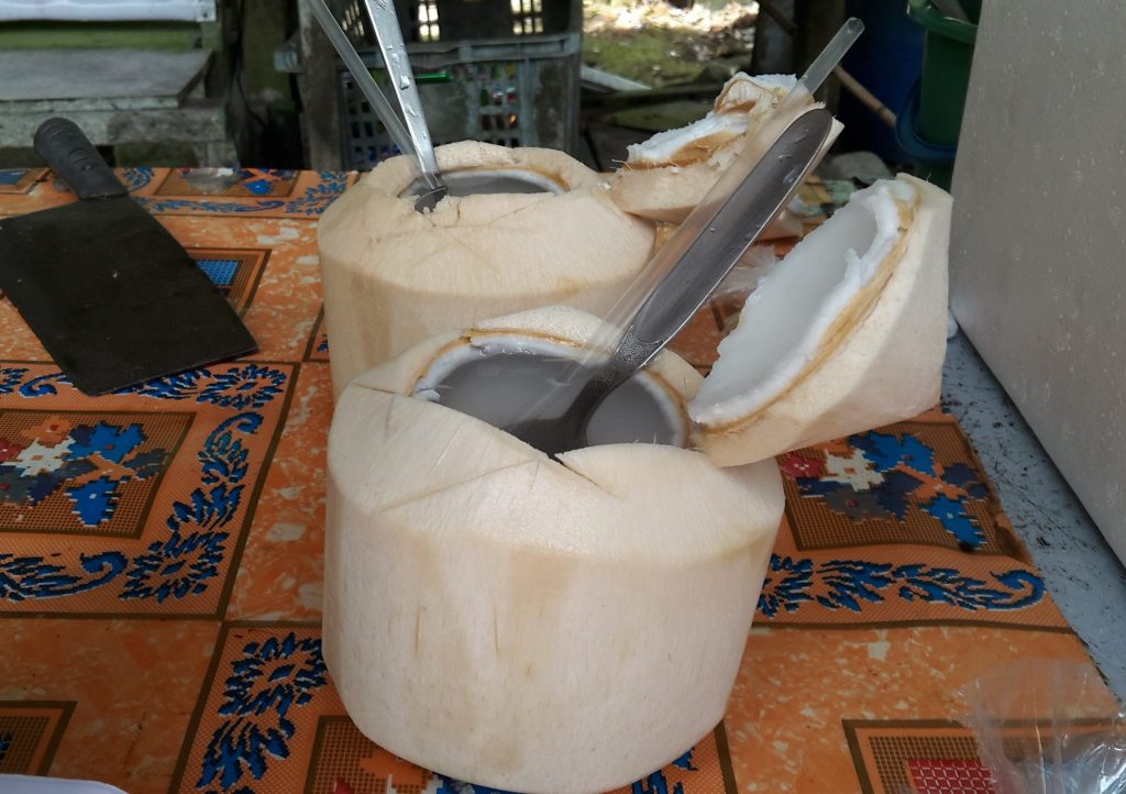 Coconuts that have been husked and chopped open on top, with a spoon and straw ready to use, on Pulau Ubin
