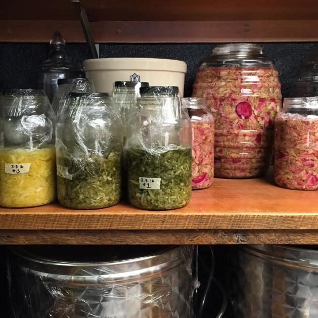 hex-kraut-jars