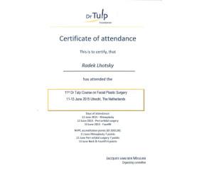 DR.tulp