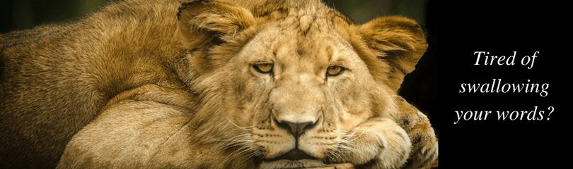 CC Lions 1 (4)